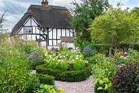 A contemporary garden with Amelanchier, a gravel area and yew-edged beds of  tall perennials, ornamental grasses and Cosmos, thatched cottage beyond
