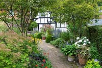 A brick path cuts diagonally through the garden, passing by two multi-stemmed Amelanchier lamarchii underplanted with perennials and shrubs, arriving at a cottage