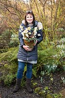 Woman standing by mixed border, holding a pot of Helleborus - Hellebore
