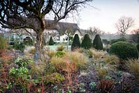 Mixed border with Cornus 'Midwinter Fire', ornamental grasses and Helleborus - Hellebore, beyond topiary and thatched cottage