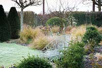 White bench framed with clipped box in March with borders of Pheasant grass, Sedums and Cornus sanguinea 'Midwinter Fire'