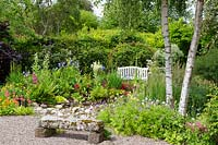 View over stone bench to beds with Geraniums, Meconopsis, Aquilegia, Candelabra Primula and Betula - Birch - tree trunks