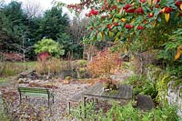 Pond area with marginal planting of Corylus avellana contorta  - Contorted Hazel, Cornus  - Dogwood - stems, viewed from seating area under Cotoneaster in berry