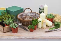Materials and tools for creating a green advent basket with succulents