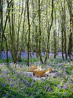 Picnic set out in Bluebell wood in Spring with cushions, blankets, wooden boxes, baskets and food