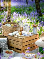 Picnic items set out in Bluebell wood in Spring.