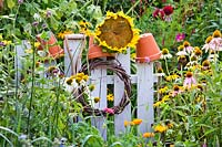 Sunflower on a fence as a decoration and bird attraction amongst mixed planting of flowers and vegetables in vegetable border