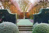 View from the Lower Rill Garden towards the Lime Allee on a frosty December morning. Planting includes: clipped yew balls and hedge 'Taxus baccata' a beech hedge 'Fagus' and the non-suckering limes, Tilia platyphyllos 'Rubra' with their bright red new growth catching the low dawn light.