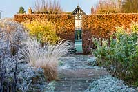 The Lanhydrock Garden on a frosty December morning. Planting includes: Molinia 'Heidebraut' Miscanthus 'Gracillimus' and Physocarpus opulifolius 'Dart's Gold'