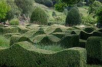 Topiary waves interspersed with grasses at Grendon Court, Herefordshire, September