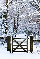 Snow scene - Wooden gate leading into woods- December