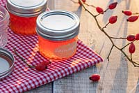 Hagebuttengelee - Rosehip Jelly in glass jars on table top with gingham table cloth and rose hips.