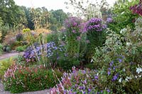 Colourful bed with ornamental grasses and flowering perennials