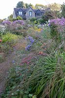 View through ornamental grass to bed of flowering perennials,  house beyond