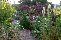 View over gravel path to border with clipped shrub and flowers