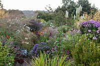 Overview of extensive planting of flowering perennials and ornamental grasses