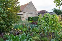 Vegetable garden - Yews Farm, Martock, Somerset