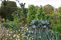 The Vegetable garden - Yews Farm, Martock, Somerset.
