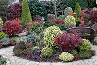 Wooden bench amongst autumnal colours of mixed acers, conifers, photinias, topiary and azaleas