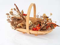 Trug of dried flowers and seed heads for Christmas, autumn, winter arrangements.