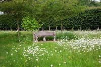 Antique stone bench and pleached Limes behind in country garden with wild flower meadow.
