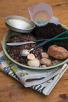 Equipment - compost, grit, pebbles, old newspaper, funnels, old cutlery suitably modified to use as tools. Step by step - How to plant a bottle garden.