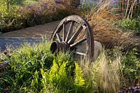 An old cart wheel in a bed with Polystichum polyblepharum, Stipa tenuissima and Polemonium 'Heaven Scent', Carex testacea and Cirsium rivulare 'Atropurpureum'. The Low Line Garden