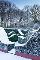 Snow covered wave-form hedges of Taxus baccata and Buxus sempervirens. Garden – Veddw