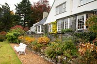 A herbaceous border with autumnal plant foliage in front of the Arts and Crafts style house at High Moss, Portinscale, Cumbria, UK
