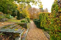 A gravel path along moss covered stone terraces surrounded by Taxus baccata and Fagus sylvatica in autumn at the Arts and Crafts style garden at High Moss, Portinscale, Cumbria