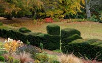 Elaborately shaped Yew topiary Taxus baccata and autumn foliage around a Chinese red bench in the garden at High Moss, Portinscale, Cumbria, UK