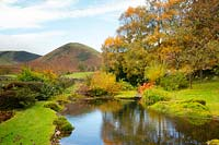 Mounds of moss around a pond surrounded by autumn foliage on sycamore trees and a view of The Tongue on the northern fells