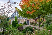 A part timbered Mediaeval manor house, seen over an island bed of clipped topiary and past a maple tinged with autumn colour.