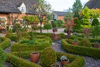 A formal parterre created from clipped box hedges, balls and standards, with the red autumn foliage of small flowering almonds, Prunus triloba.