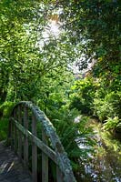 View from lichen covered wooden bridge of ferns and trees overhanging pond