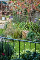 Low maintenance  city garden - view to greenhouse and ornamental cherry tree