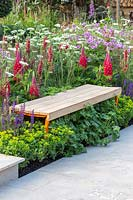 Wooden bench in border with Lupinus 'Beefeater', RHS Greening Grey Britain for Health, Happiness and Horticulture.