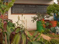 A typical Zimbabwean classroom and garden inspired and sponsored by CAMFED - The Campaign for Female Education at RHS Chelsea Flower Show, 2019.