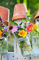 Edible flowers and herbs in glass jars attached to a picket fence.
