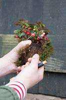 Woman wiring berries to the rustic wreath. Styling by Marieke Nolsen