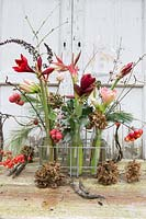 Floral arrangement in milk bottles: Hippeastrum, Malus - Crabapple, seedheads, Pinus - Pine and dried Hydrangea flowers
