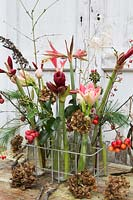 Floral arrangement in tray with milk bottles including Hippeastrum, crab apples, seedheads, holly and dried Hydrangea flowers. Styling: Marieke Nolsen