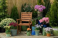 Spring display with potted plants on terrace patio.