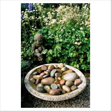 plantar piedras 0012492