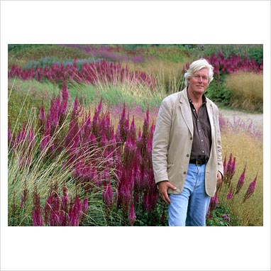 Marc 39 s gardens the not so new 39 new 39 perennial movement for Piet oudolf plant list
