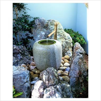 plantar piedras 0047304