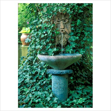 gap photos garden plant picture library wall mounted water feature with hedera gap. Black Bedroom Furniture Sets. Home Design Ideas