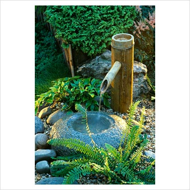 Gap photos garden plant picture library japanese for Japanese bamboo water feature