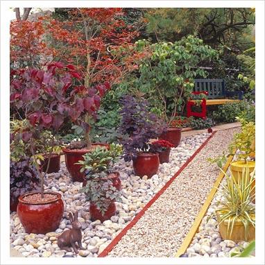 caminos en el jardin 0065232