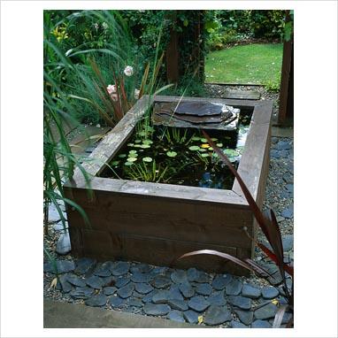 Gap Photos Garden Plant Picture Library Raised